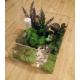 cutie plexiglass cu licheni