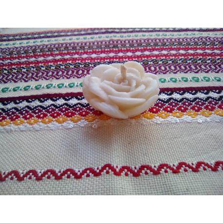 Trandafiri cu parfum musk
